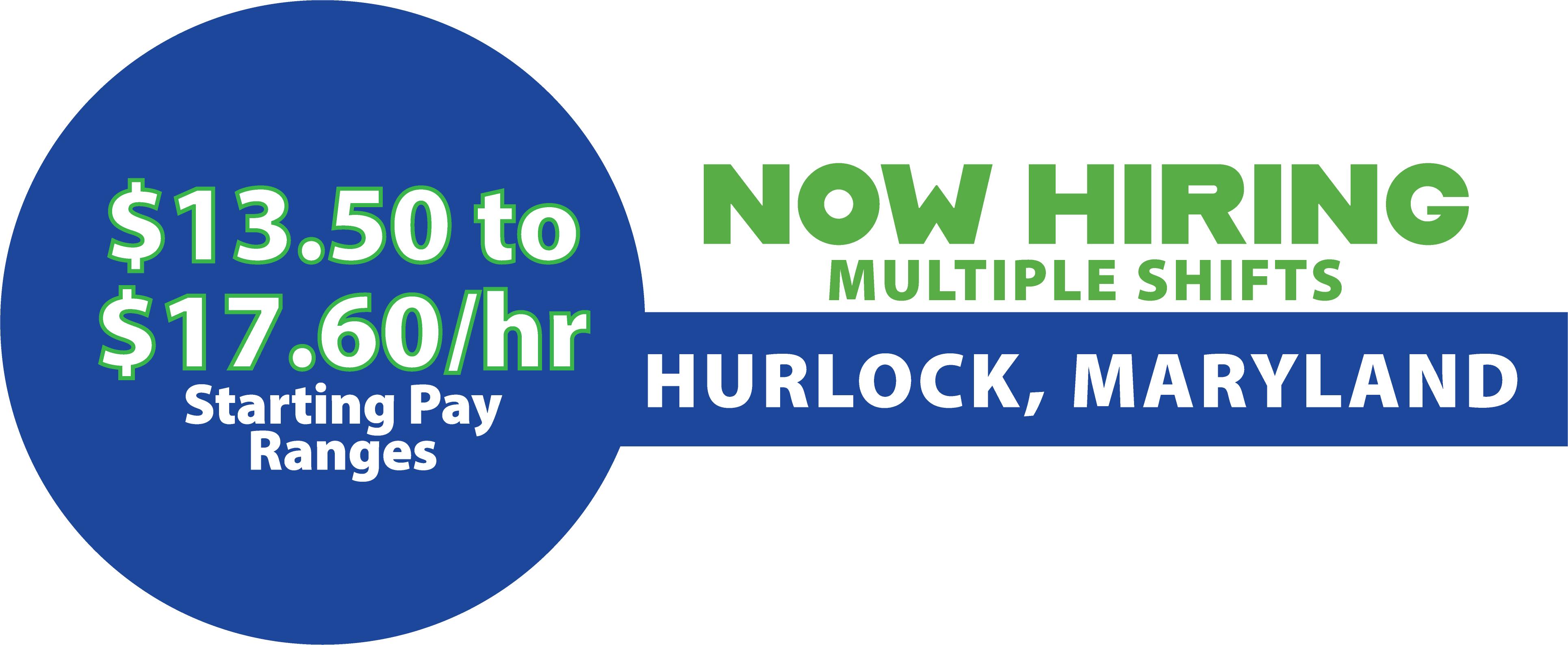 Hurlock Pay_Website